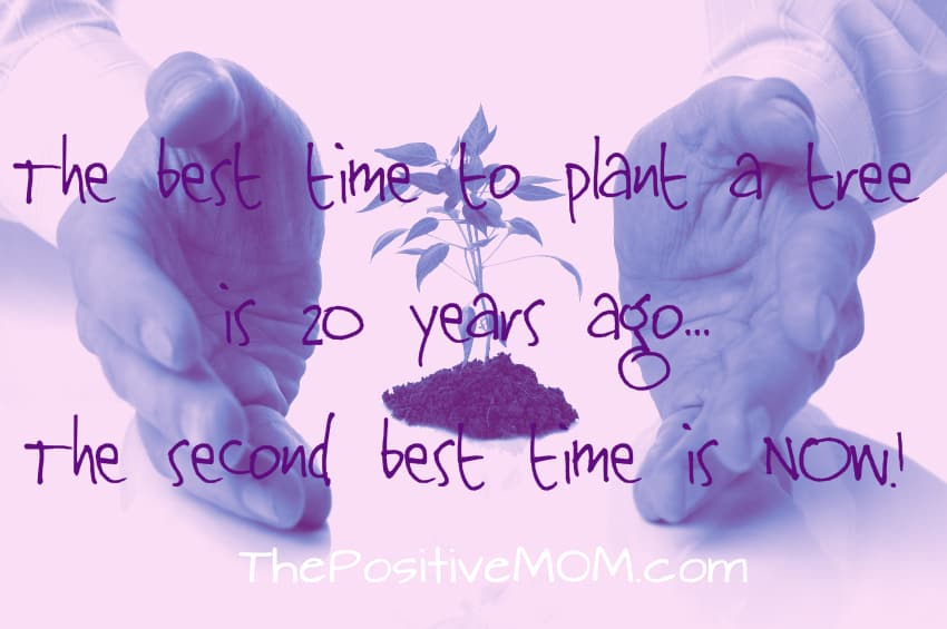 the best time to plant a tree is 20 years ago - the second best time is now