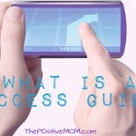What Is A Success Guide?