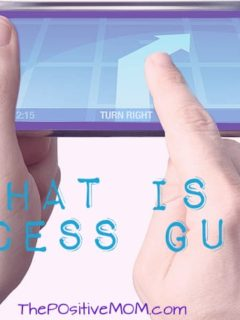 What is a Success Guide? Elayna Fernandez ~ The Positive MOM