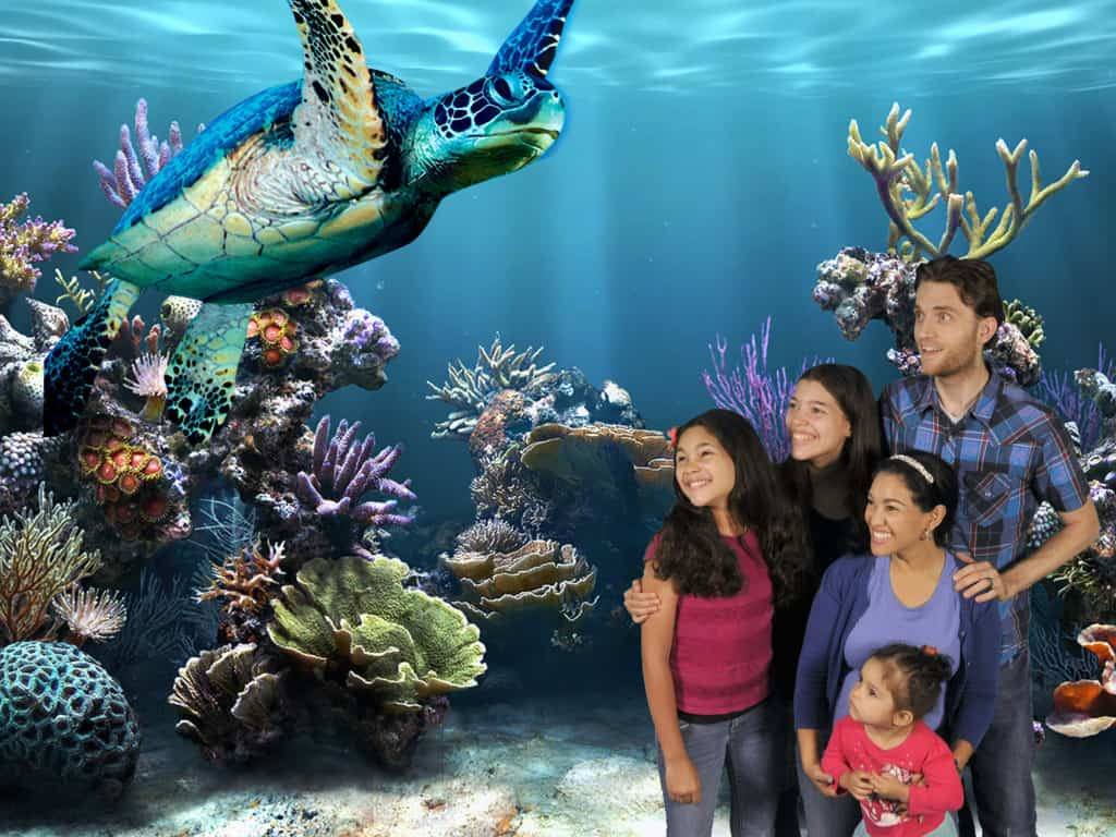 SeaLife Aquarium Grapevine Texas - DFW