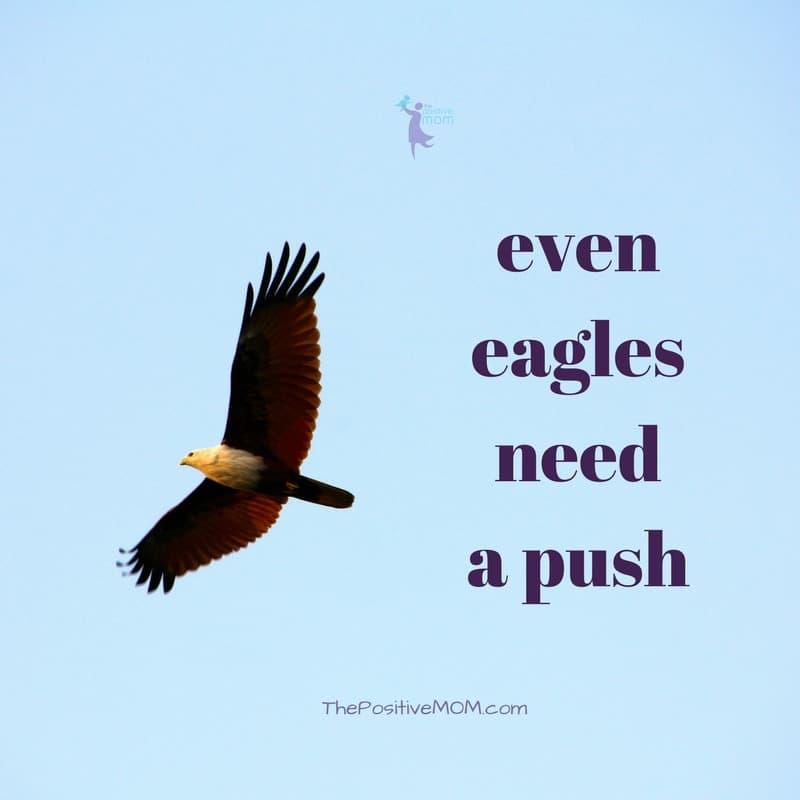 Even eagles need a push! | Elayna Fernandez ~ The Positive MOM