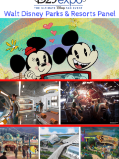 Walt Disney Parks and Resorts announcements at D23 Expo