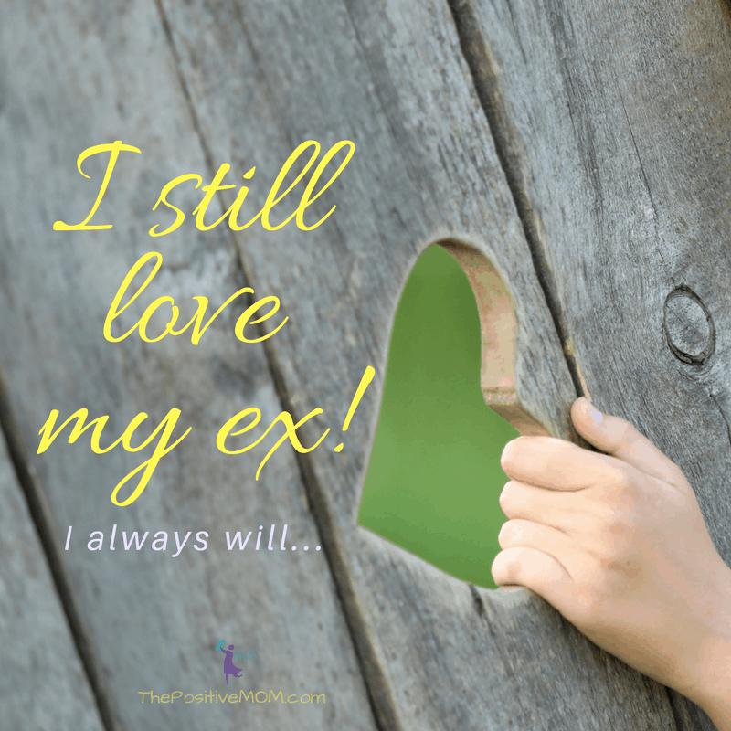 I still love my ex. I will always love my ex.  My ex is my soulmate!