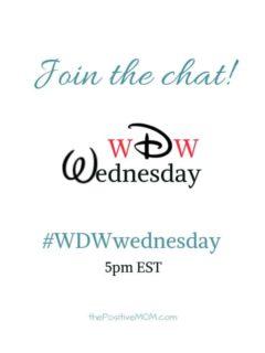 Walt Disney World Wednesday