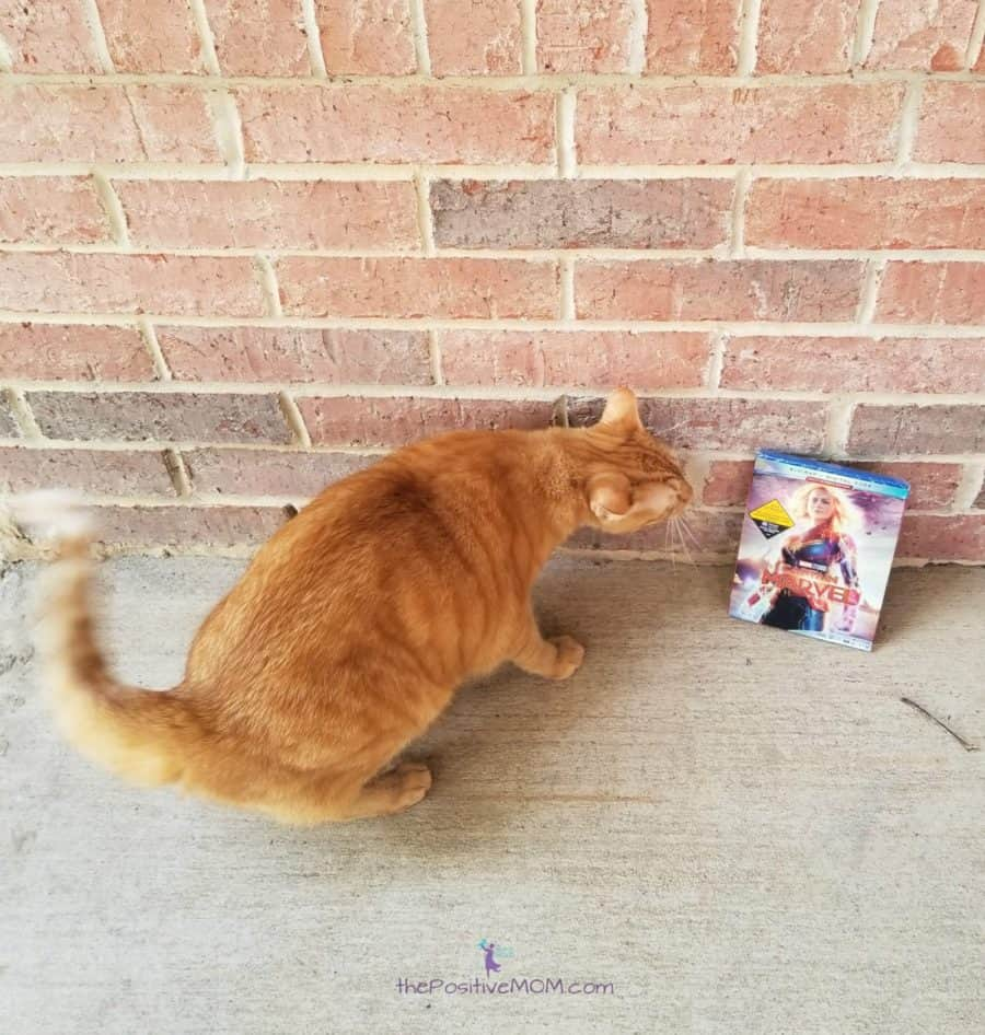 Captain Marvel Goose Bluray digital code giveaway