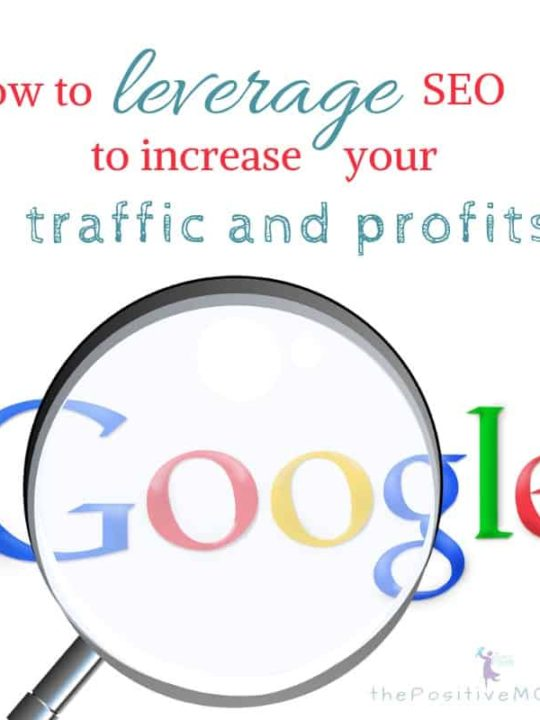 How to leverage SEO to increase your traffic and profits