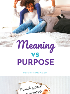 Meaning vs Purpose - What is the difference and why does it matter?